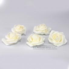 Flori spuma trandafir ALB